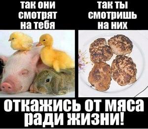 Вегетарианство_vegetarianstvo_1