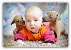 Домашние_животные_и_дети_domashnie_zhivotnye_i_deti_1
