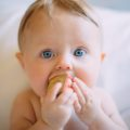 Коротко о диете мамы и ребенка - беременность, кормление грудью и расширение диеты